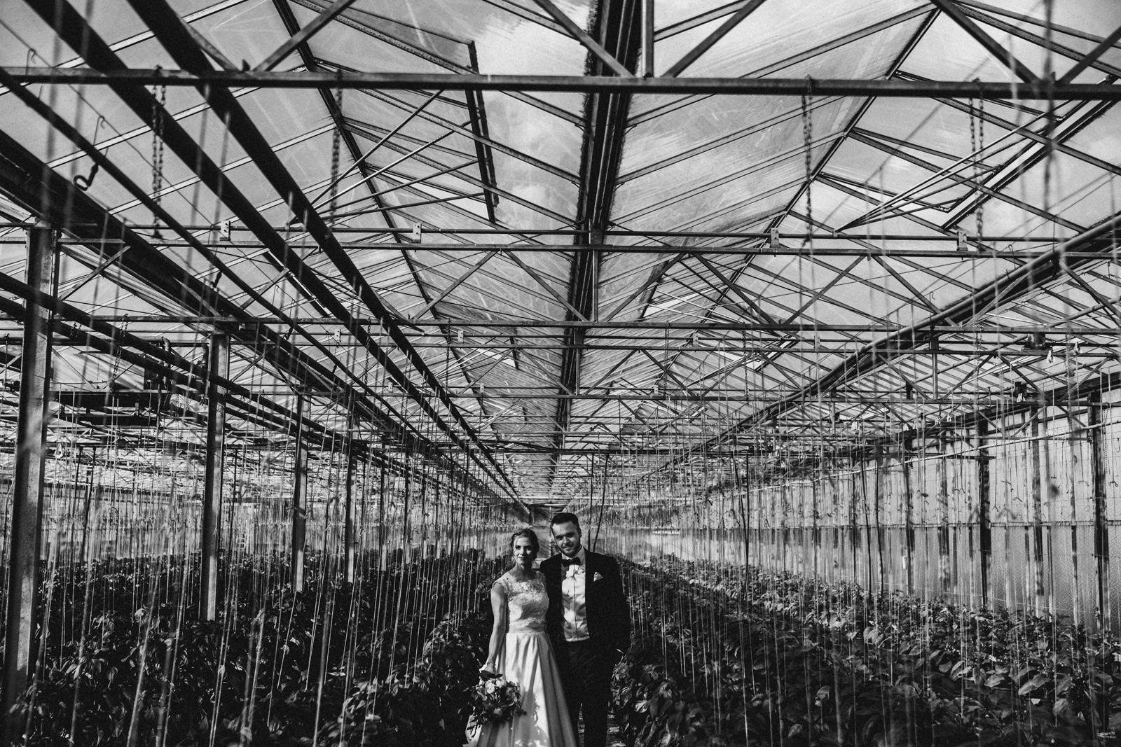 Hochzeit im Gwaechshaus in Nuernberg. Begleitet als Hochzeitsreportage durch Hochzeitsfotograf Axel Link aus Wuerzburg