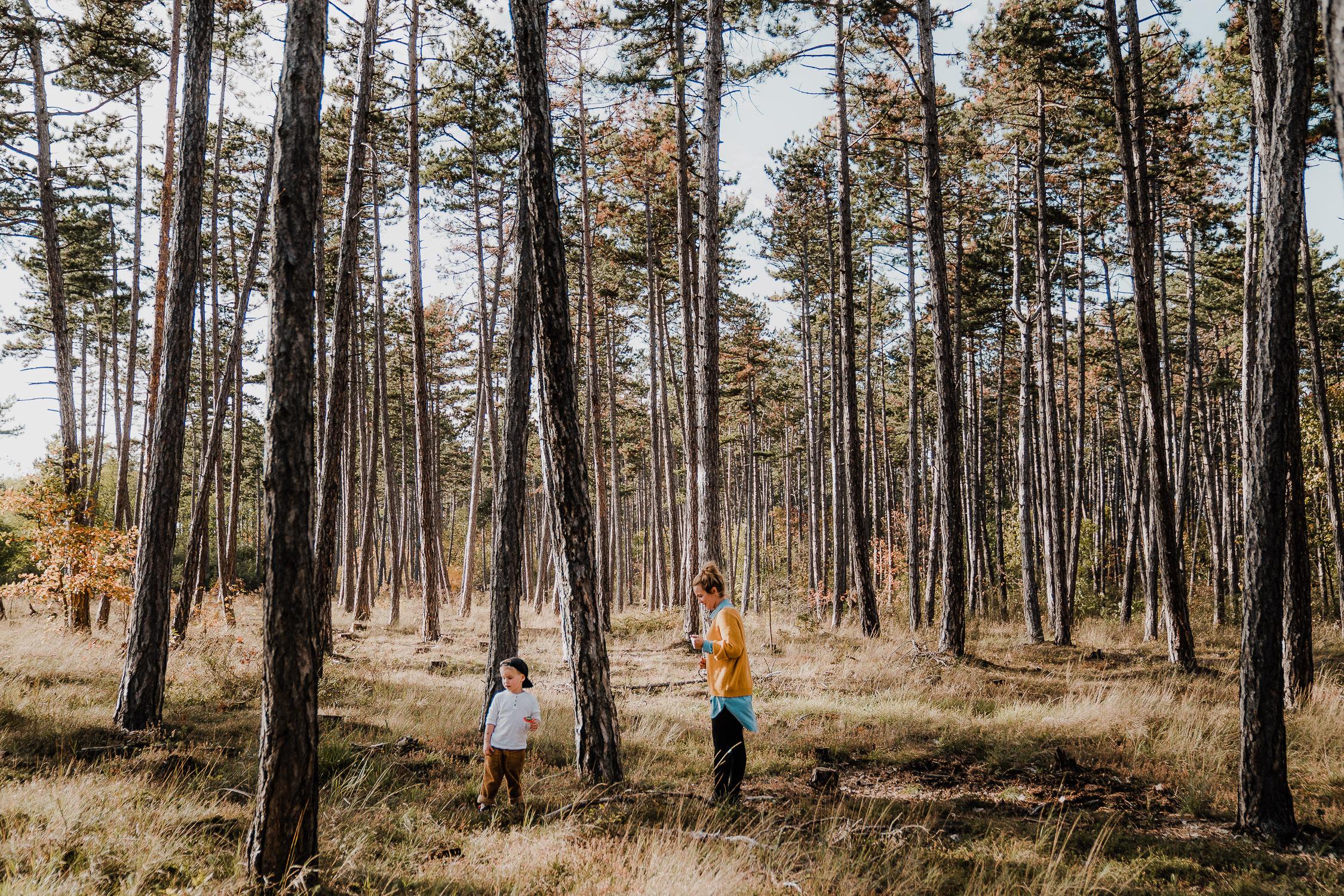 Familienfoto im Wald. Echt und ungestellt